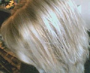 Platinum Blonde Hair With Lowlights Images & Pictures - Becuo